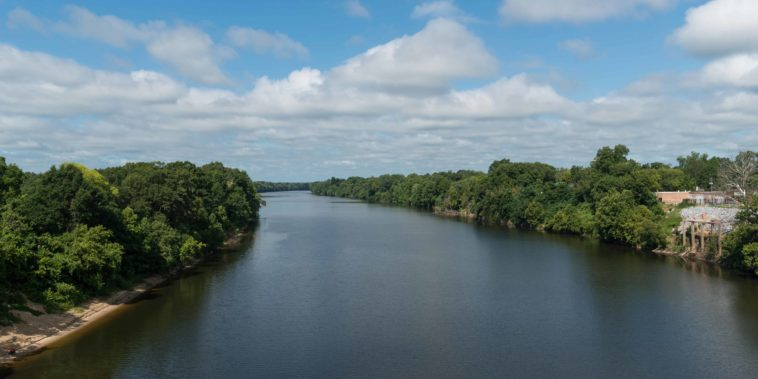 Alabama_River,_near_Selma_AL_20160713_1